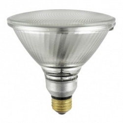 250PAR38/FL/PRO Light Bulb: 250 watt, 120 volt, PAR38 flood, E26