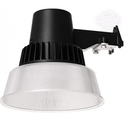 NaturaLED 7478 Wall Mounted Security Light Fixture: 38 watt, 5000K