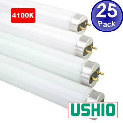 "FO32/841K/ECO Ushio 3000101 Light Bulb: 48"", 32 watt, 4100K, T8, G13"