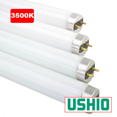 "FO17/835K/ECO Ushio 3000260 Light Bulb: 24"", 17 watt, 3500K, T8, G13"