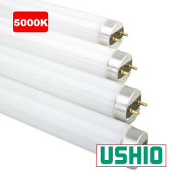 "FO25/850K/ECO Ushio 3000266 Light Bulb: 36"", 25 watt, 5000K, T8, G13"