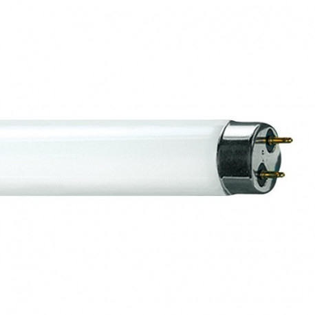 F15T8/D Eiko 15522 Light Bulb: 15 watt, 6500K, T8 fluorescent tube
